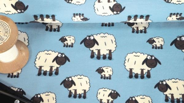 Baumwoll Jersey Sheep das Kuschelschaf auf hellblau