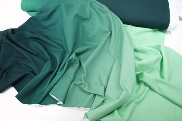 French Terry • unaufgeraut • ombre • grüner Farbverlauf