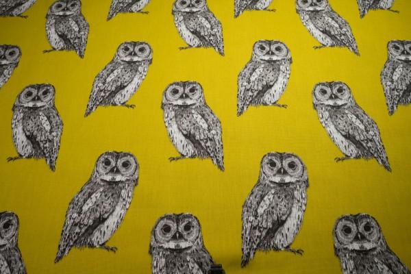 Clarke & Clarke Canvas Owl saffron Eulen auf safran Baumwollstoff